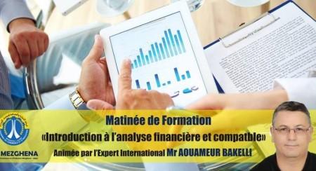 Matinée de Formation : Introduction à l'analyse financière et comptable
